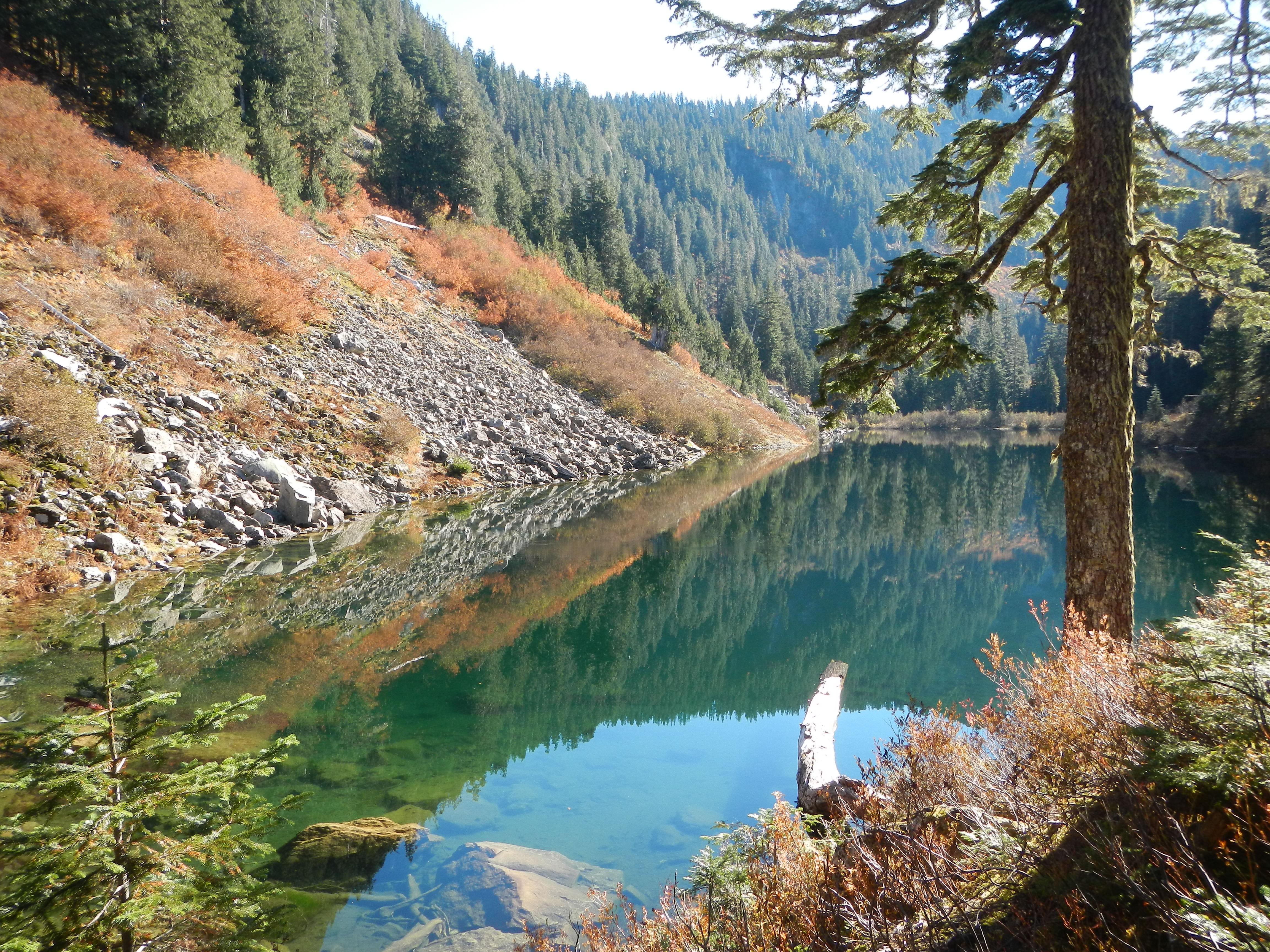 Coal Lake Washington Department Of Fish Amp Wildlife