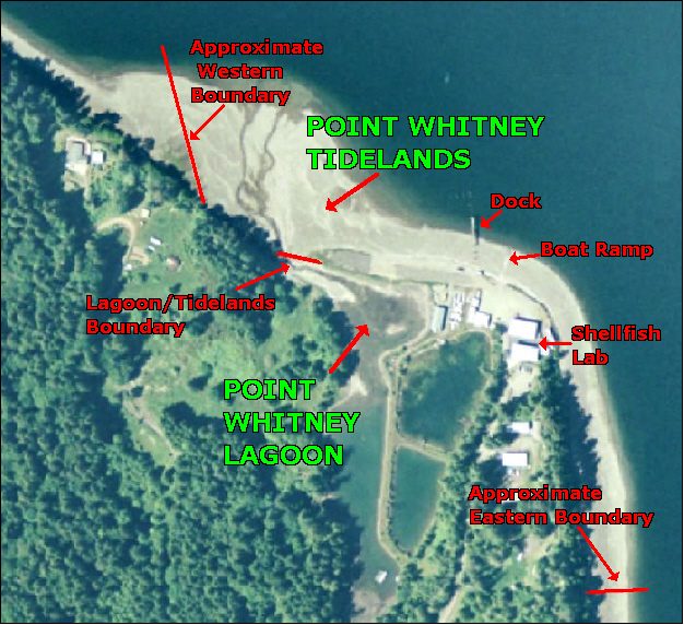 POINT WHITNEY TIDELANDS AND POINT WHITNEY LAGOON map