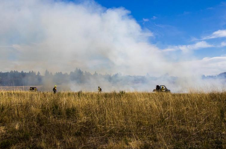 Crews conduct a controlled burn on a prairie.