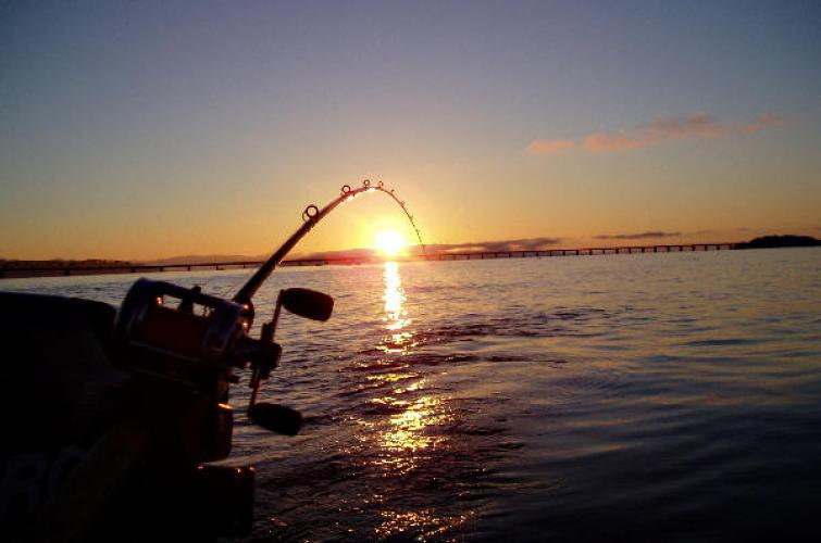 Fishing rod over the water with sunset in the background