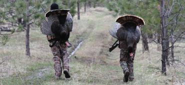 two hunters with turkeys