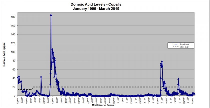 Graph showing domoic acid levels in Copalis from January 1999 - March 2019