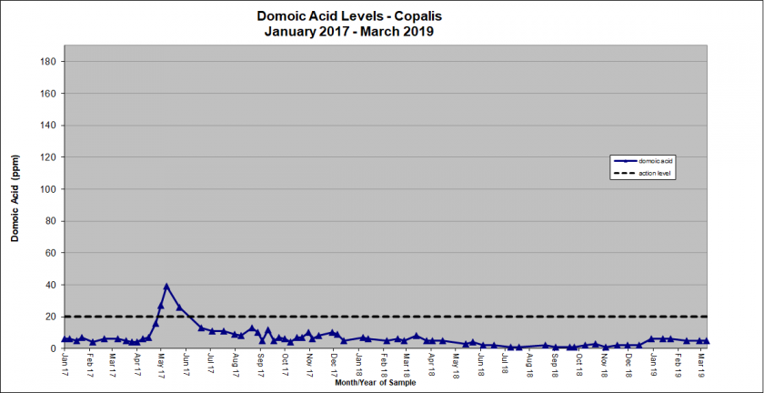 Graph showing domoic acid levels in Copalis January 2017 - March 2019
