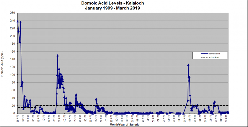 Graph showing domoic acid levels in Kalaloch from January 1999 - March 2019