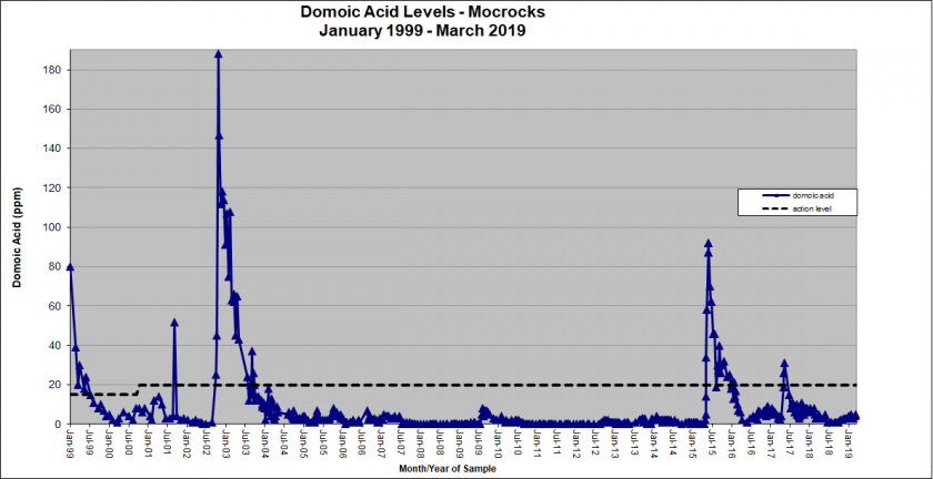 Graph showing domoic acid levels in Mockrocks from January 1999 - March 2019