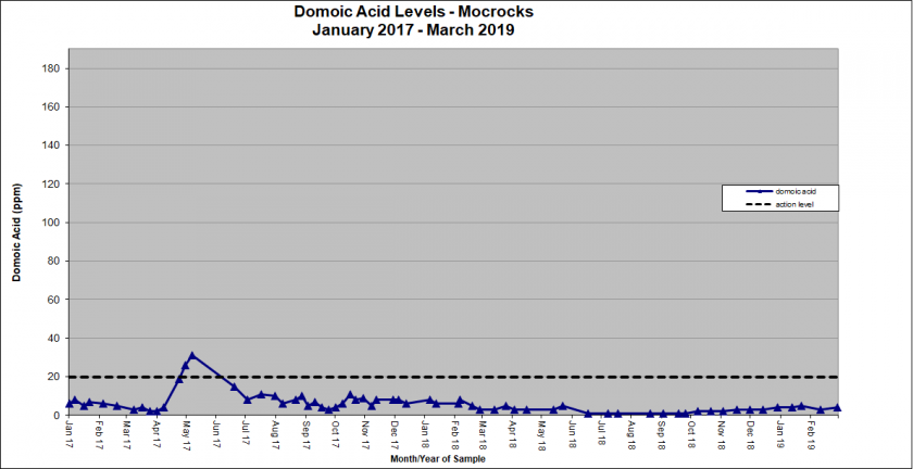 Graph showing domoic acid levels in Mocrocks January 2017 - March 2019