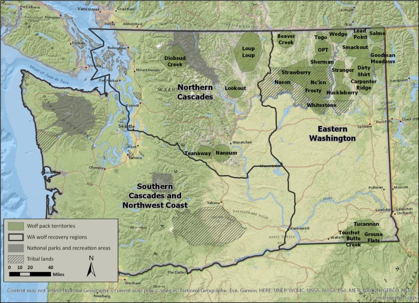 Monthly Wolf Report - March 2019 | Washington Department of ...
