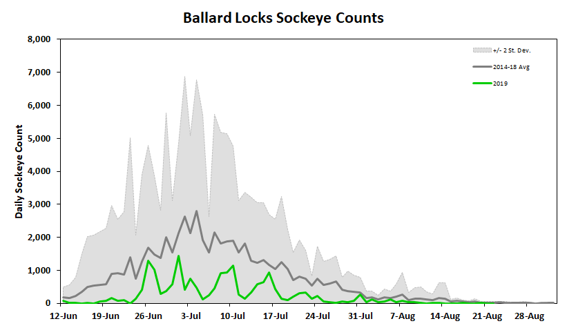 Ballard Locks Sockeye Counts