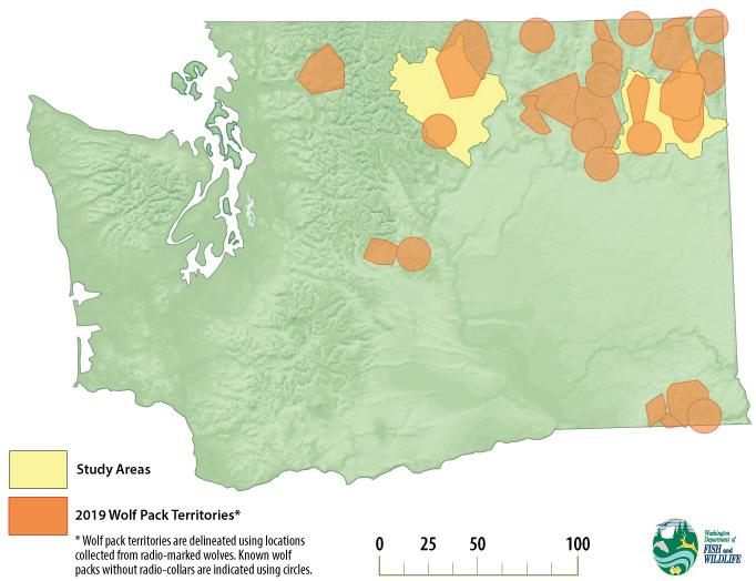 Washington state map showing the predatory/prey study areas with wolf pack ranges overlaid on top.