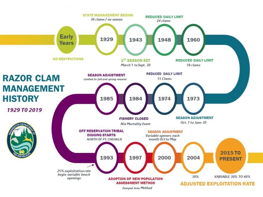Graphic showing a timeline of razor clam management 1929-2019