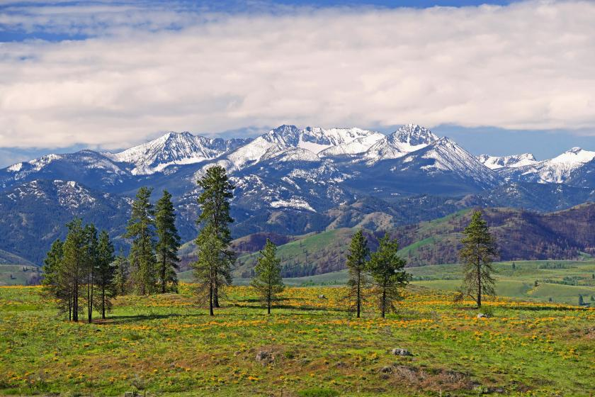 Sawtooth Range in the Methow