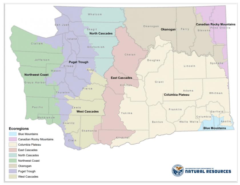 Map showing nine ecoregions in Washington State