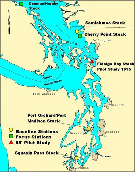 Pacific herring sampling locations