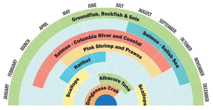 Infographic showing seafood in season throughout the year.