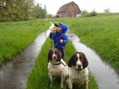 Photo of young child holding two dogs on a leash blowing a duck call whistle