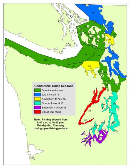 Map of commercial smelt seasons in Puget Sound