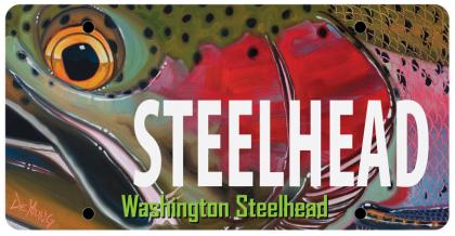 Steelhead license plate
