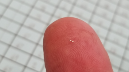 Coded wire tag on fingertip