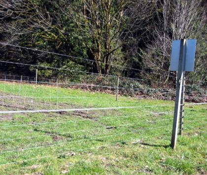 Photo of an elk-proof fence
