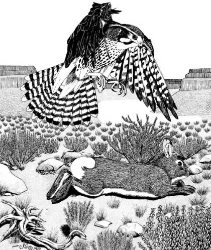 A drawing shows a rabbit running from a predatory hawk.