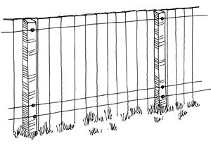 A drawing shows how to rig electrical wire to prevent raccoons from climbing fences.