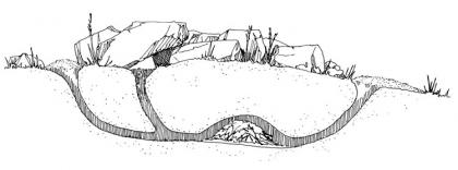 A drawing shows the layout of a rats underground burrow.