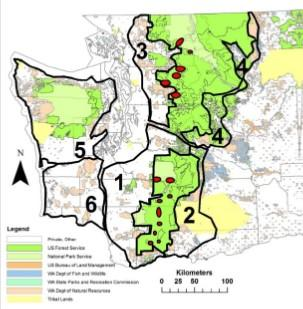 CCAA management zones for fishers in Washington