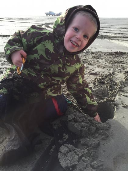 Kid digging into beach searching for razor clams.
