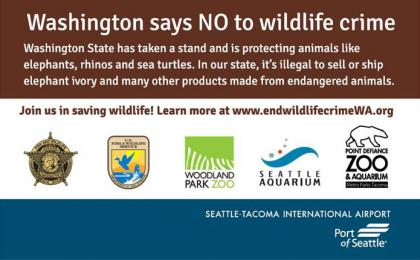 Washington state has taken a stand and is protecting animals like elephants, rhinos, and sea turtles.