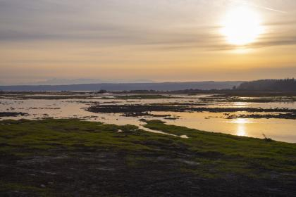 Sunset over first high tide at Leque Island