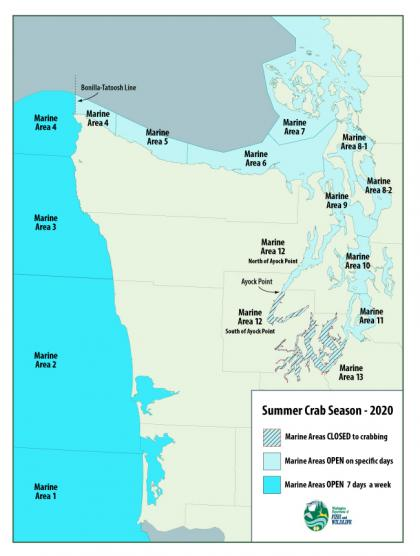 Puget Sound Recreational Crab Seasons Begin July 2 In Most Areas July 12 In Marine Areas 10 And 11 Washington Department Of Fish Wildlife