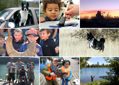 Collage of photos including Karelian bear dogs, youth outdoors, and people with disabilities
