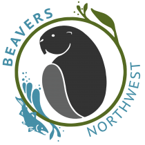 "A beaver in a circle with the text ""beavers northwest"" around it."