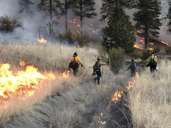 WDFW crews are shown working a prescribed fire
